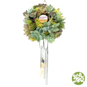Succulent Windchime Kit